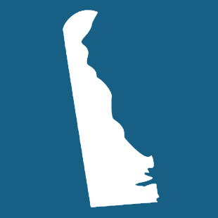 Image of the Delaware Corporate Law logo